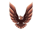 DECAL KIT 5-COLOR BRONZE TRANS AM 79-80