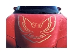 DECAL KIT W/O RAM AIR GOLD FIREBIRD OR TRANS AM 98-02