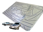 DECAL KIT 10TH ANNIVERSARY W/MOLDED STRIPES TRANS AM 79