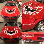 CUSTOM COLOR LOOPING STYLE KIT FIREBIRD TRANS AM 73-78