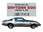 1979 Trans-Am 10th Anniversary Daytona 500 Pace Car Decals Set