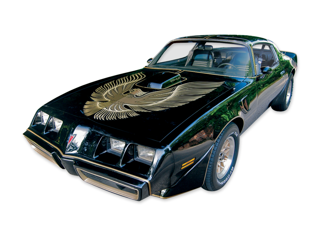 1981 Trans-Am Special Edition Bandit 2 Color Light Gold/ Darker Gold Decal Set with Roll of Stripes (GOLDV2)