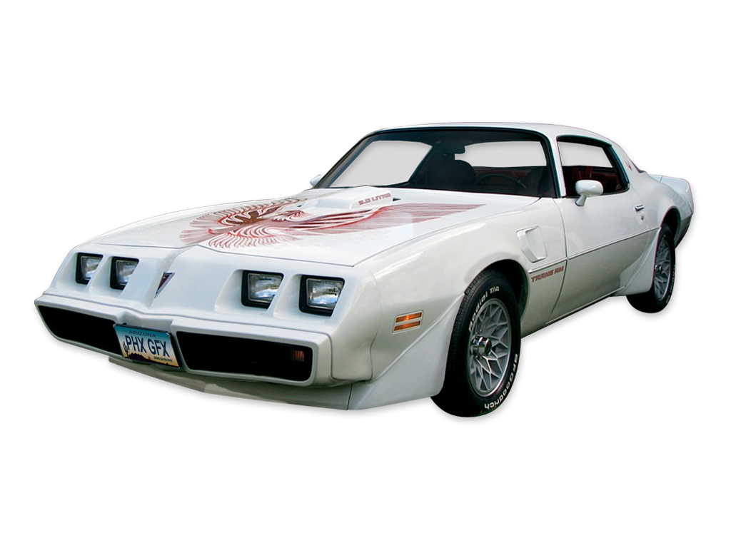 1981 Trans AM 2 Color Light Charcoal / Dark Charcoal Decal Set
