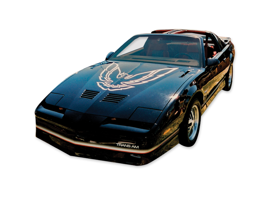1987 Trans-Am Gold with Ochre Accent Decal Set with Large Hood Bird