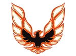 1973-78 Trans-Am Black /Light Orange / Dark Orange Decal Set (LOOPING BIRD STYLE)