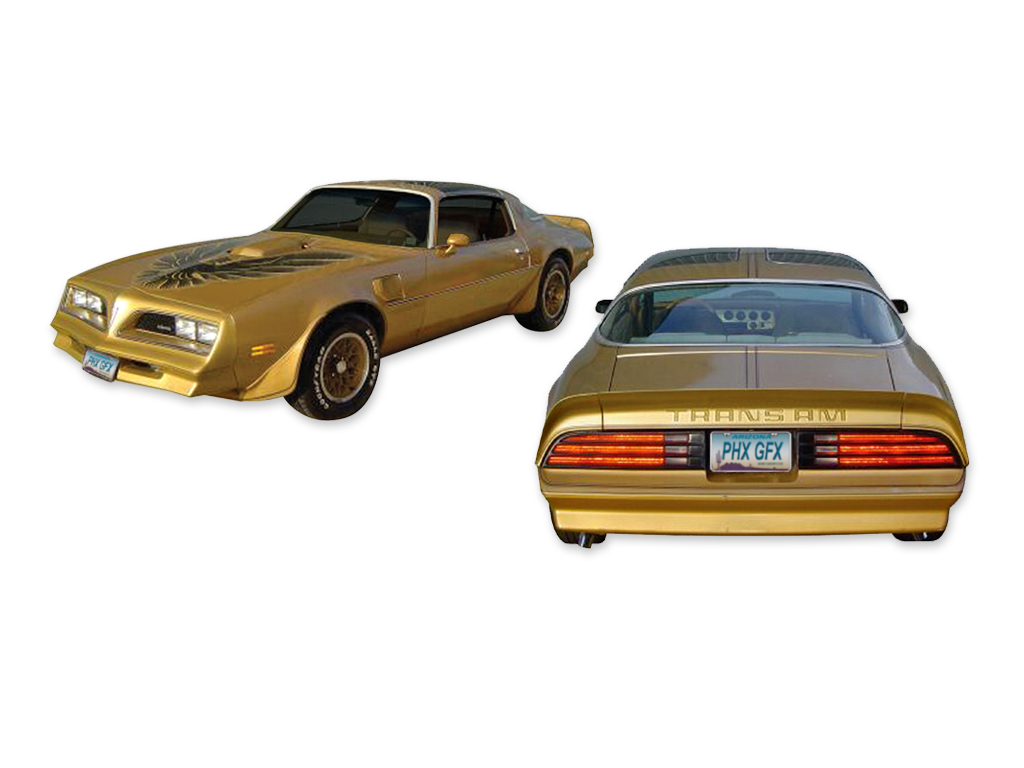 1978 Trans-Am Special Edition 5 Color Gold / Brown Decal Set with Roll of Stripes for Gold Cars