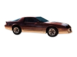 DECAL KIT Z28 FITS 1987 TOO GOLD CAMARO 85-86