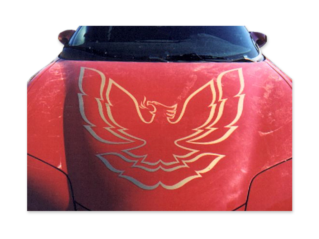 1998-2002 FIREBIRD or TRANS AM (without RAM AIR) GOLD