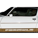 1976 PONTIAC FIREBIRD FORMULA DOOR NAME DECAL SET (ORANGE)